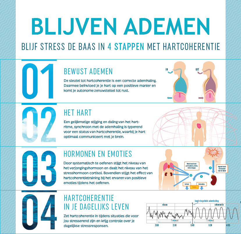 Poster 4 stappen.PNG